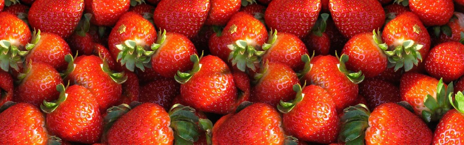 delivery-de-frutas-a-empresas-nobrefrutas-banner3