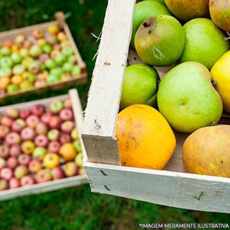 Empresa de Entrega Frutas Santo Amaro - Entrega de Frutas e Verduras a Domicílio