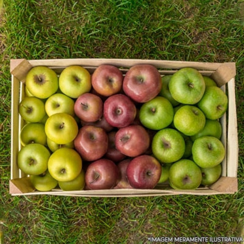 Entrega de Frutas no Trabalho Orçamento Praça da Arvore - Entrega de Frutas na Empresa